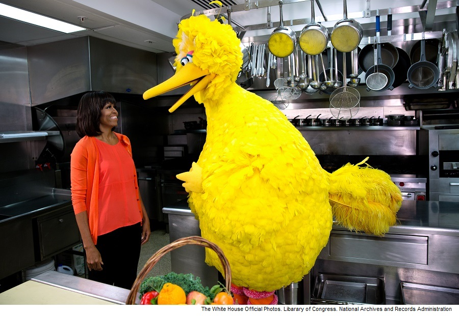 "First Lady Michelle Obama participates in a ÒLetÕs Move!Ó and ""Sesame Street"" public service announcement taping with Big Bird in the White House Kitchen, Feb. 13, 2013. (Official White House Photo by Lawrence Jackson) This official White House photograph is being made available only for publication by news organizations and/or for personal use printing by the subject(s) of the photograph. The photograph may not be manipulated in any way and may not be used in commercial or political materials, advertisements, emails, products, promotions that in any way suggests approval or endorsement of the President, the First Family, or the White House.Ê"